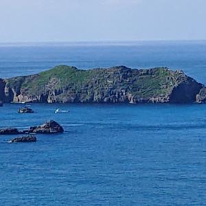 南島は入島禁止期間で行けなかった…《小笠原⑭》