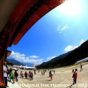 【ハリネズミ留守番1日目】 バンコクからブータン、パロ空港へ 【BHUTAN】