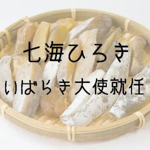 七海ひろきさん「いばらき大使」就任と永久輝せあさんVISAガール就任について。