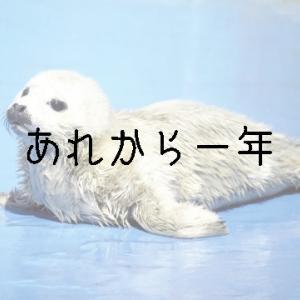 七海ひろきさん退団発表から1年~夢のおわりと、夢のはじまり〜