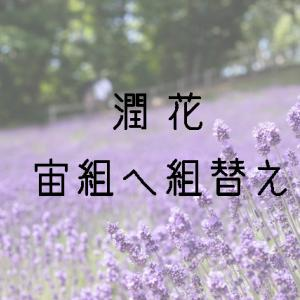 潤花さん宙組へ組替え~そこに愛はあるのかい?~