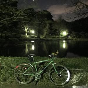 称名寺 海の公園 夜遊び