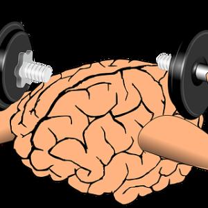 脳をだますダイエットとは?同時に筋肉までだますと・・・ | 40代主婦 Life Change