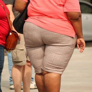 所得が低いと肥満になる? | 40代主婦 Life Change