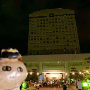 県庁前ナイトマルシェ@新潟県庁芝生広場