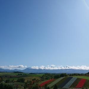 秋の北海道と今日のポチ