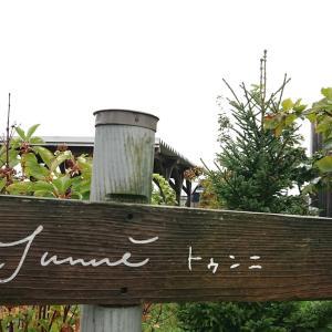 2019年秋 北海道旅行 暮らすように泊まる宿 ニセウコロコ