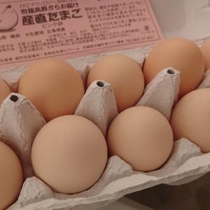 おいしい卵!お買い物マラソンポチレポ
