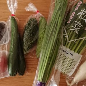 美味しい野菜とお買い物マラソン、怒涛のラストスパート!