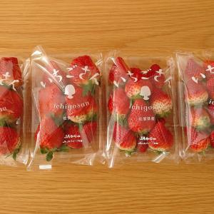 届いたイチゴとマリメッコのヴィヒキルースをポチ!