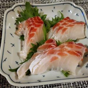 スーパーセールポチレポ!美味しすぎた鯛!!