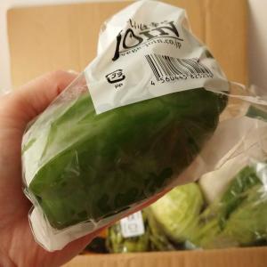 美味しすぎる野菜と楽天ブランドデーが気になる!