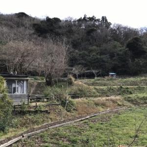 家族も私も好きな時間〜SYOKU-YABO農園〜