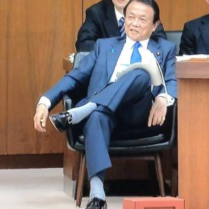 だったら麻生太郎から議員バッチをはく奪せよ