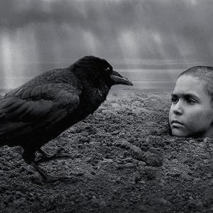「異端の鳥」