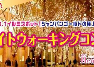 【11/9(土)】30代40代中心!大人世代で気兼ねなく♪期間限定!東京NO.1イルミスポット!