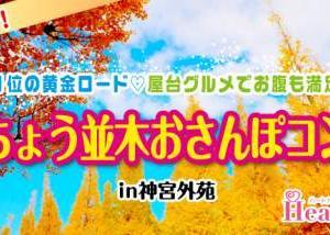 【11/24(日)】期間限定!秋の絶景!まるで絵画!全国1位の黄金ロード♡屋台グルメでお腹も満足