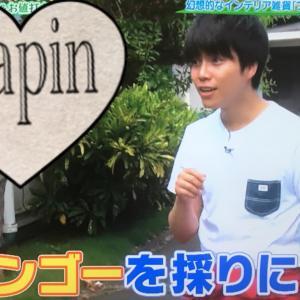 2019/08/10 モモコのOH!ソレ!み〜よ!ハワイSP その4