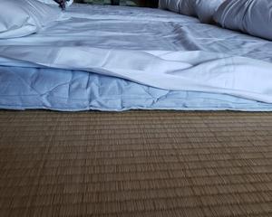 実践寝床で変わるいびき