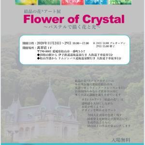 結晶の花®︎アート展〜パステルで描く花と光〜始まりました!