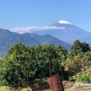 富士の冠雪