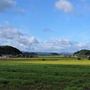 秋のサイクリング~佐太神社
