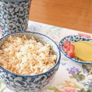 玄米ってどれも同じだと思ったら・・・美味しいのを見つけた!