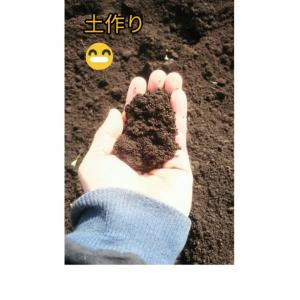 春の土作り