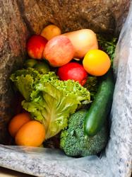 お気に入りの無農薬野菜&フルーツデリバリーサービス