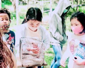 今週の自然教室「Bird Banding」