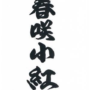 今日の漢字リクエスト2020-4 「春咲小紅」を ①濃厚な相撲字 ②さわやかな草書  で書く