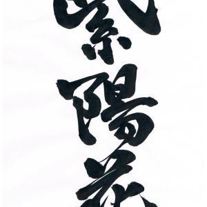 「今日の漢字」に追加de書2020-11 「紫陽花」に隷書と楷書を追加deで書