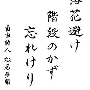 今日の漢字リクエスト2021-38「落花避け 階段のかず 忘れけり」を 楷書で書く