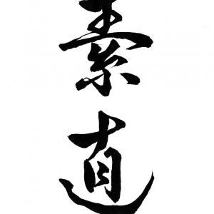 今日の漢字リクエスト2021-49「素直」を 2書体で書く