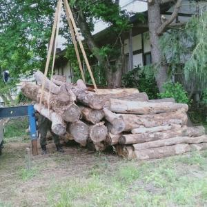 薪原木が届いた!