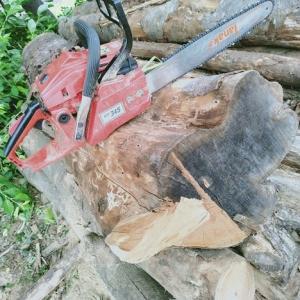 負けるかよ!ぶっとい薪原木