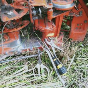 稲刈り、最終回!