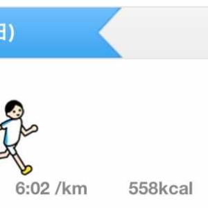2日連続で走りました