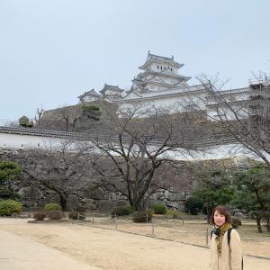 真冬の姫路城へ