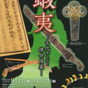 東北歴史博物館の特別展「蝦夷-古代エミシと律令国家-」を観る!2019年11月14日(日)