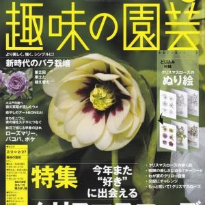 『NHK趣味の園芸』2020年2月号を読む! 2020年1月22日(水)