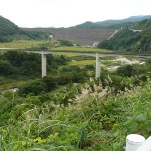 胆沢ダム&ススキ(薄/芒) 2020年9月20日(日)
