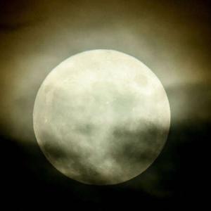 満月の十五夜、8年ぶりに21日は中秋の名月 2021年9月20日(月)