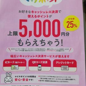 マイナンバーカードマイナポイント5000円