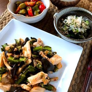新鮮野菜でお盆休みの体調整えましょう~な本日の晩酌メニュー