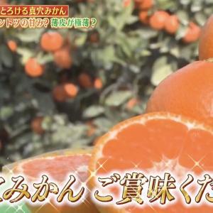 Maana Oranges