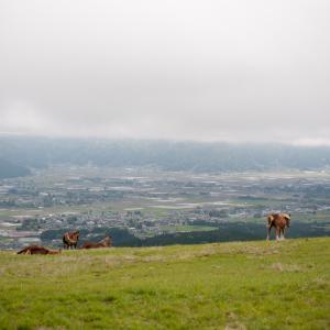 阿蘇から南阿蘇村 熊本城
