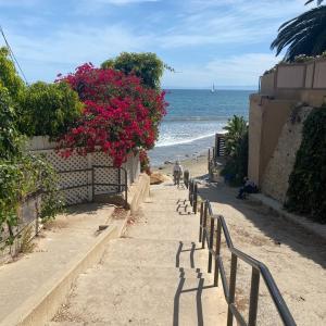 ロックダウン解除間近のカリフォルニアのビーチ