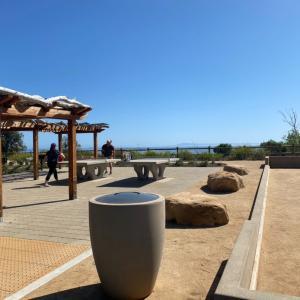 ビーチでピンポン、ビタミンDと日光浴