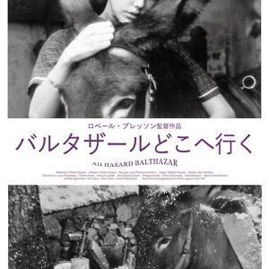 『バルタザールどこへ行く』・『少女ムシェット』/名古屋でシネマ⑦・⑧